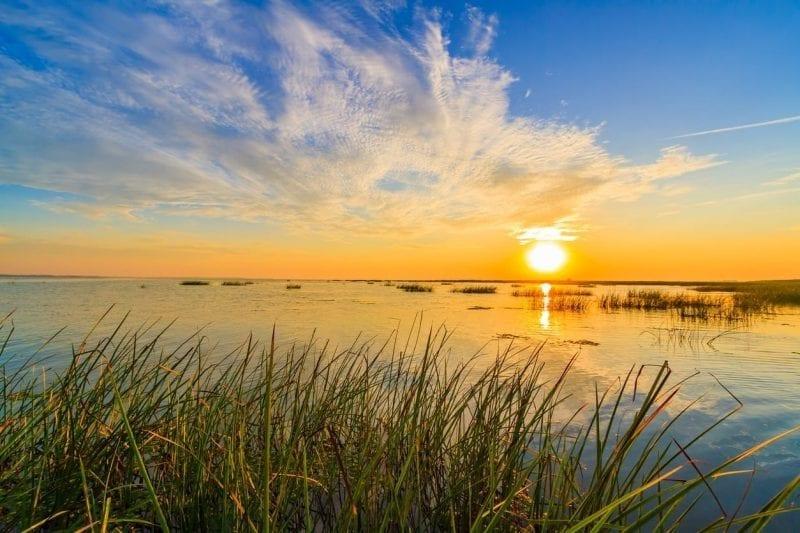 Ce-se-poate-admira-cand-vizitati-Delta-Dunarii