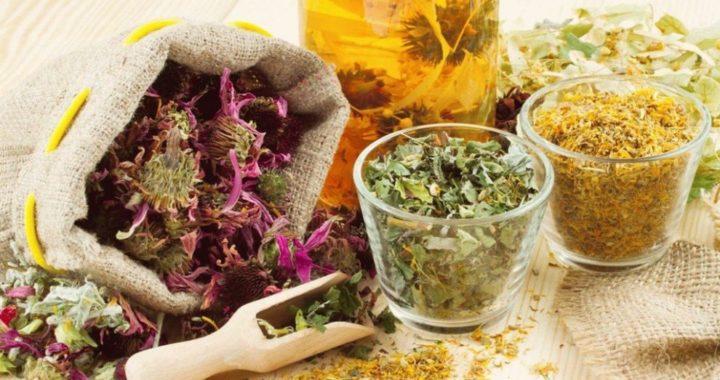 ce-plante-medicinale-sunt-eficiente